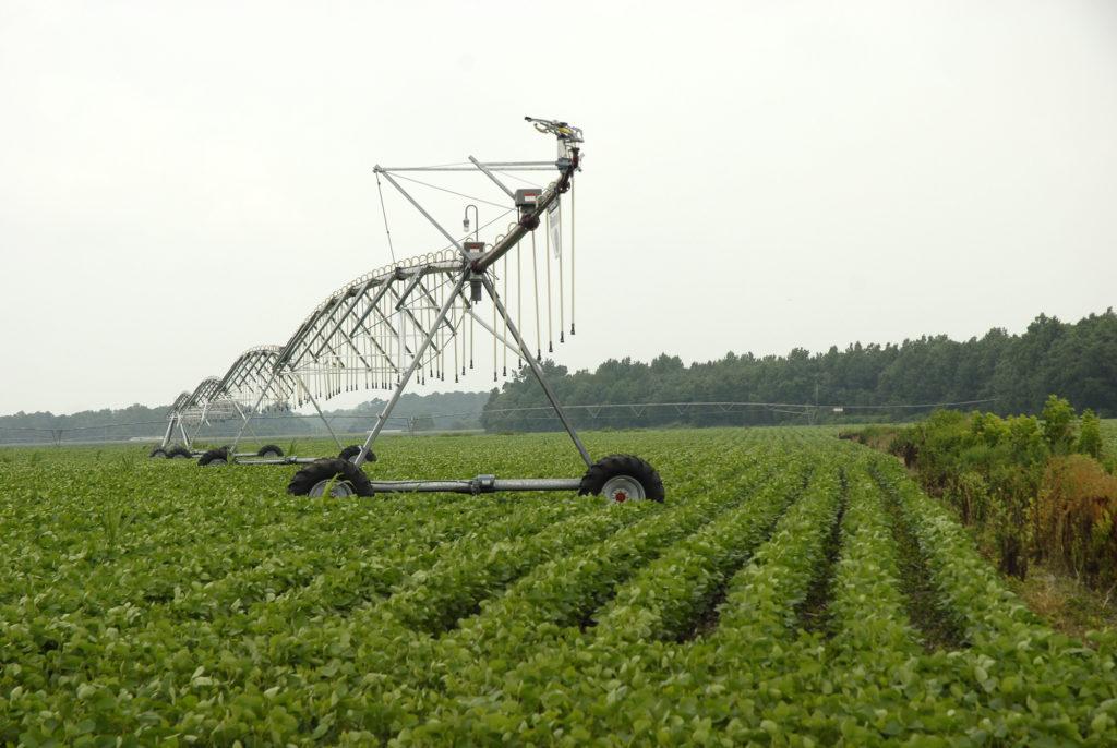 Irrigation system in soybean field